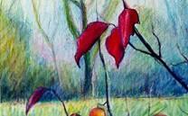 Intrarte Paints 00010