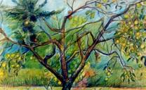 Intrarte Pinturas 00019
